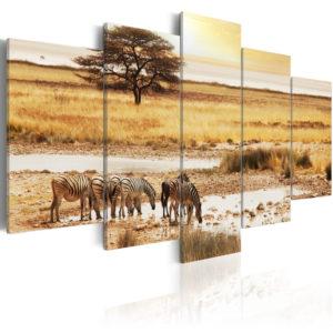 Tableau - Zèbres dans la savane fait partie des tableaux murales de la collection de worldofwomen découvrez ce magnifique tableau exclusif chez nous
