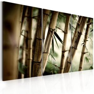 Tableau - forêt tropicale fait partie des tableaux murales de la collection de worldofwomen découvrez ce magnifique tableau exclusif chez nous
