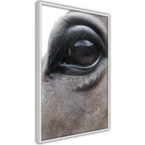 Apportez une nouvelle douche déco avec le Poster et affiche - Gentle Eyes